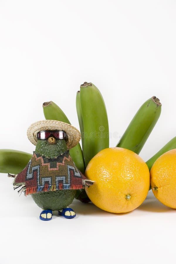 Avocat et fruit tropical - verticale photographie stock
