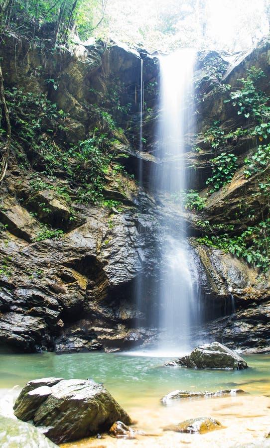 Avocat-Wasserfall stockfoto