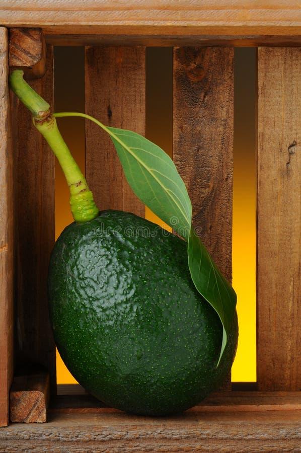 Download Avodaco in Houten Doos stock foto. Afbeelding bestaande uit avocado - 29513384