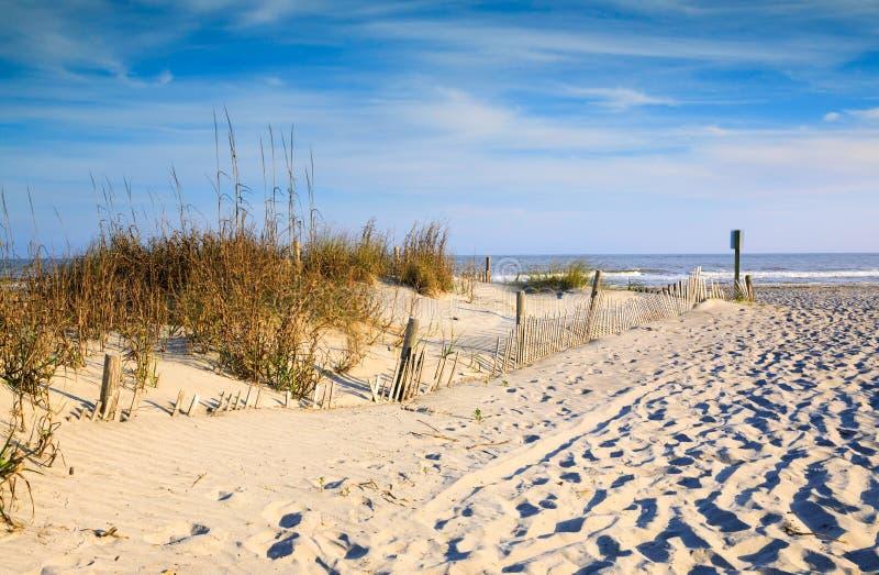 Avoine et érosion de mer de dunes de sable clôturant le Sc de plage de folie images stock