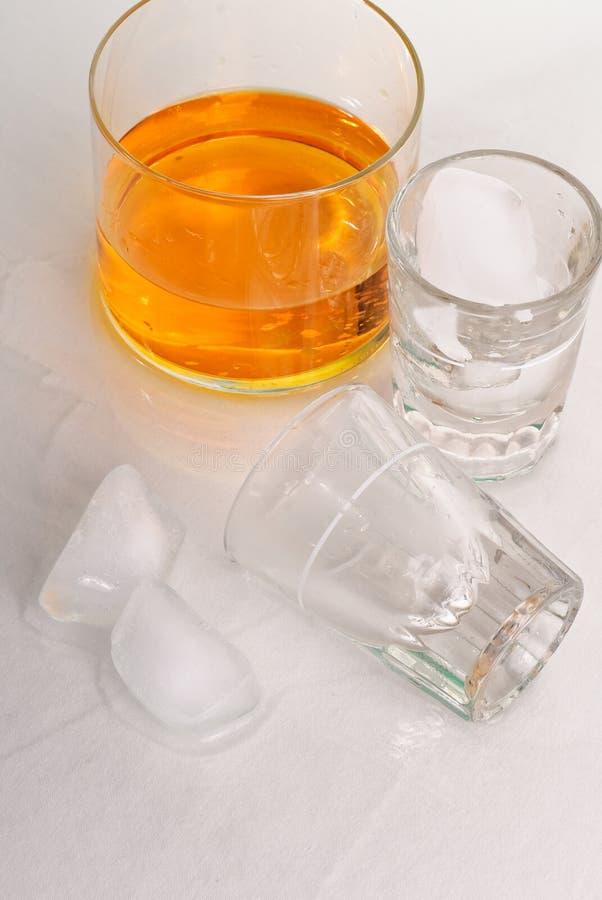 Avoir des boissons images stock