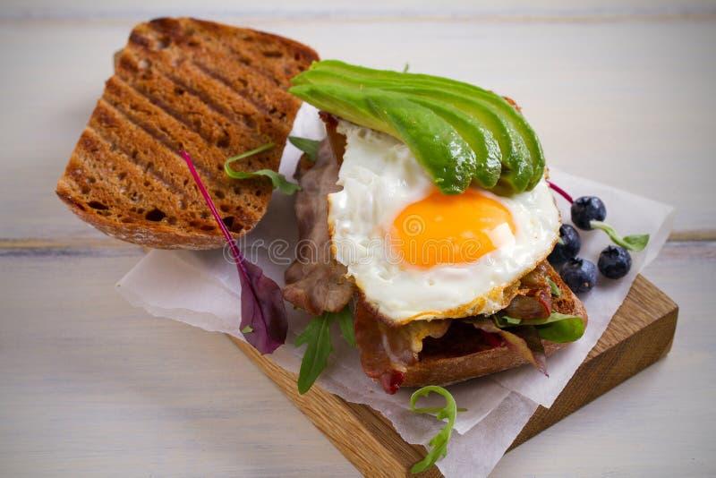 Avokado-, ägg- och baconsmörgås Stekt ägg och avokado på rostat bröd Panini Sund smaklig mat för frukost eller frunch arkivbild