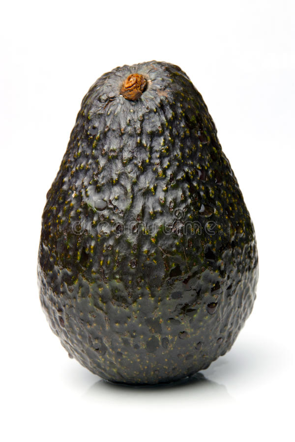 avokado fotografering för bildbyråer