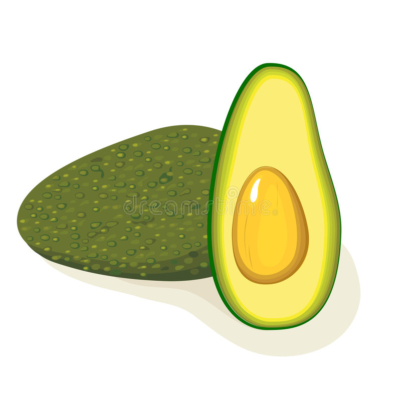 avokado stock illustrationer