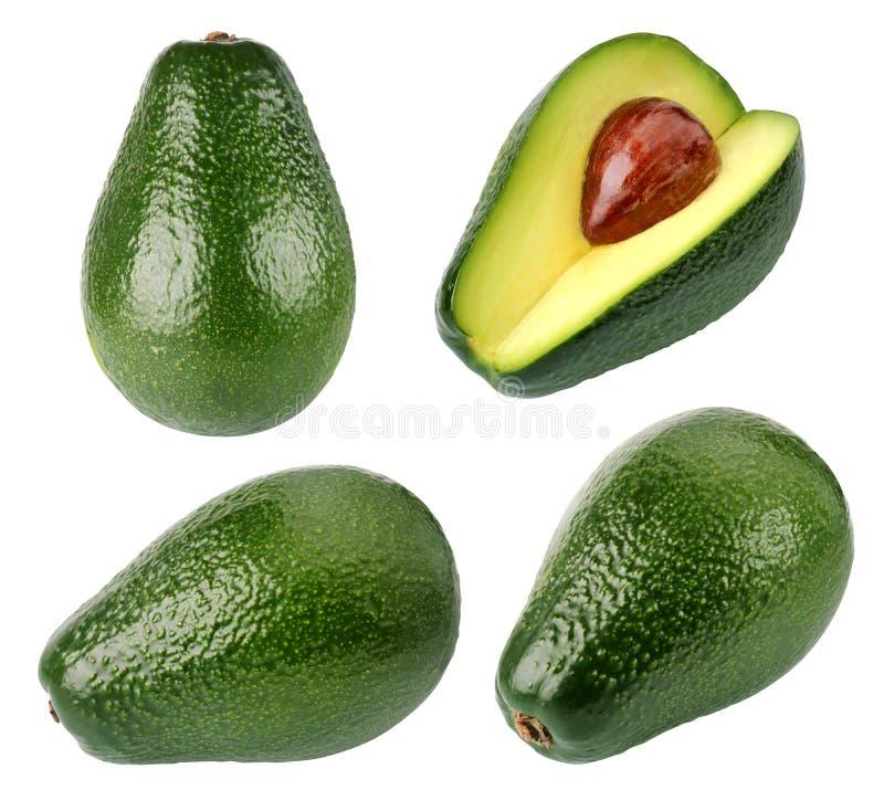 Avokadon som isoleras p? vit bakgrund avocado fotografering för bildbyråer