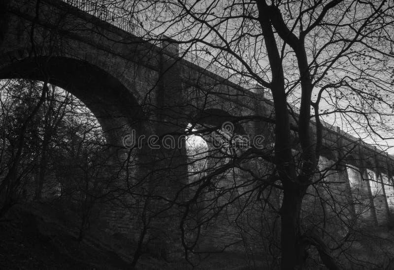 Avon Aquaduct obraz royalty free