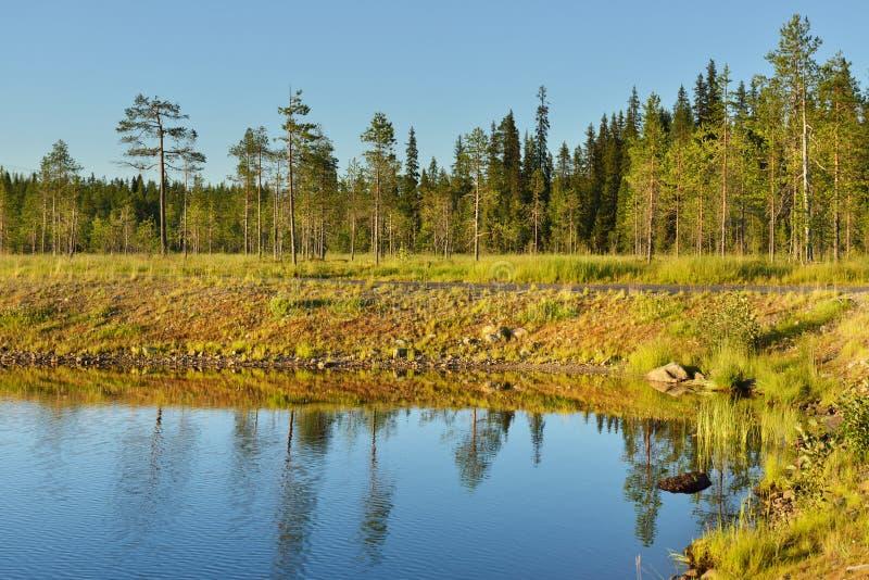 avond Kustlijn van noordelijk meer Lapland, Finland royalty-vrije stock fotografie