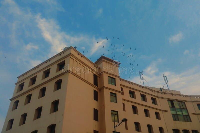 Avondhemel boven een gebouw royalty-vrije stock afbeeldingen