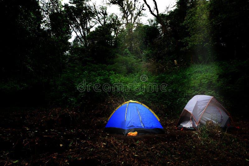 Avonturen het Kamperen toerismetent die in het bos kamperen royalty-vrije stock afbeeldingen
