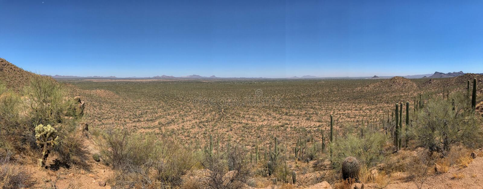 Avra Valley panorama from Saguaro National Park stock images