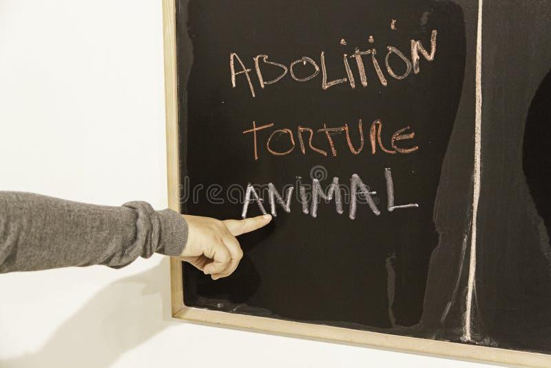 Avskaffa djur tortyr royaltyfria bilder