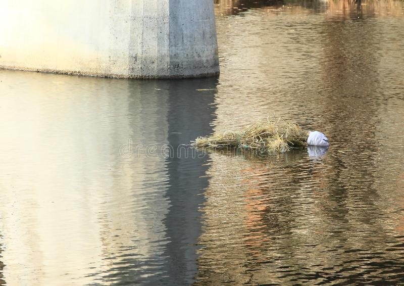 Avsked som övervintrar, och välkomna för vår - drunkna av Morana fotografering för bildbyråer