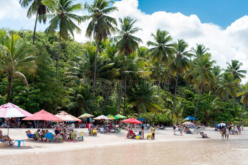 Avskild Brasilien strand royaltyfri foto