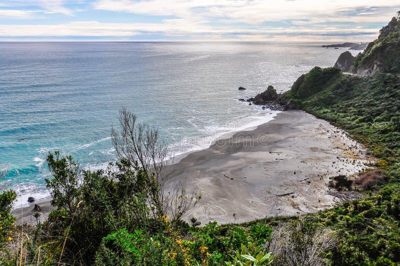Avskild strand i udde Foulwind, Nya Zeeland royaltyfri bild