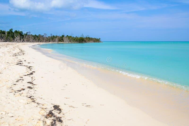 Avskild vit sandstrand i den Cayo Levisa ön i Kuba arkivfoton