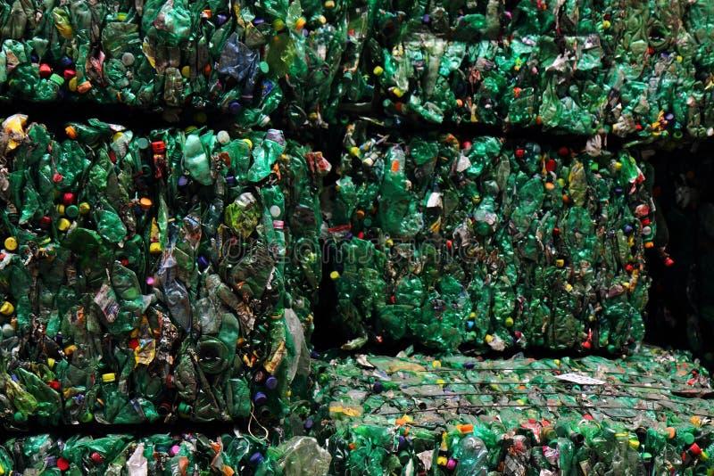 Avskräde för plast-husdjurflaska arkivbild