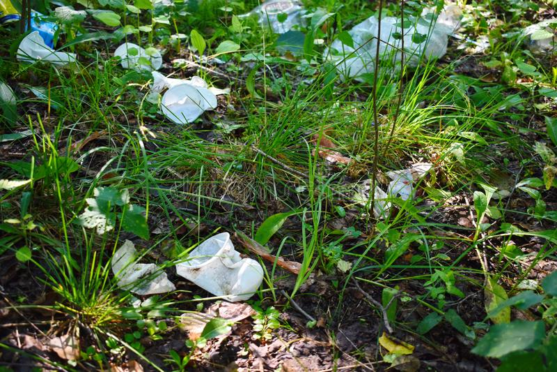 Avskräde och plast- i skogen arkivfoto