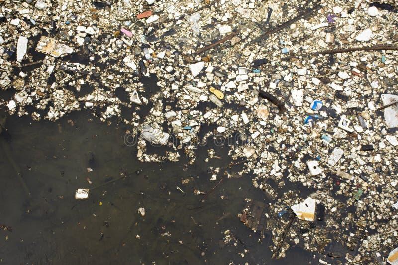 Avskr?de och avfall p? yttersida av vatten i dammet p? utomhus- i den Shantou staden eller den Swatow staden i Guangdong, Kina royaltyfri foto