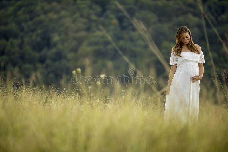 Avslappnande yttersida f?r ung gravid kvinna i natur arkivfoton