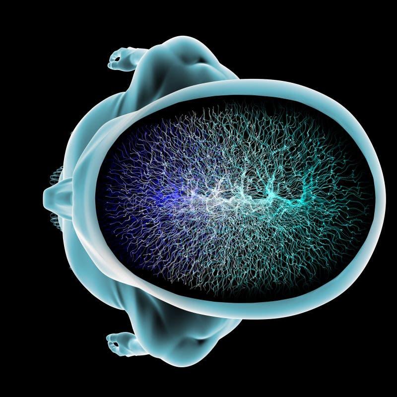 Avsnitt för hjärna för kropp för Neuronssynapsefunktion vektor illustrationer