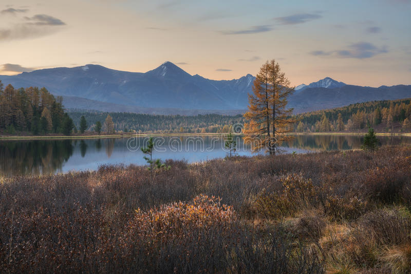 Avspegla yttersida sjön Autumn Landscape With Mountain Range på bakgrund med ljus - rosa himmel royaltyfria bilder