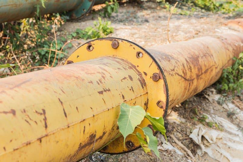 Avstängningskran på röret bland gräs beneath arkivbilder