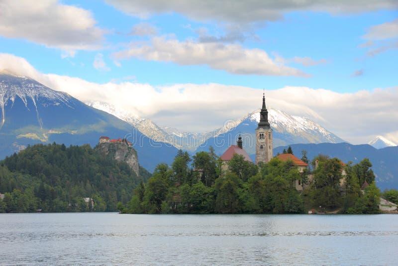 Avtappad Lake, Slovenien, Europa royaltyfria bilder