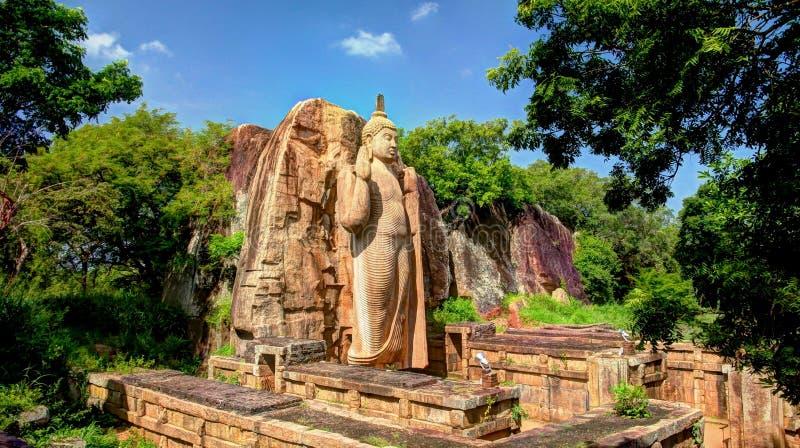 Avukana Buddhabild royaltyfria bilder