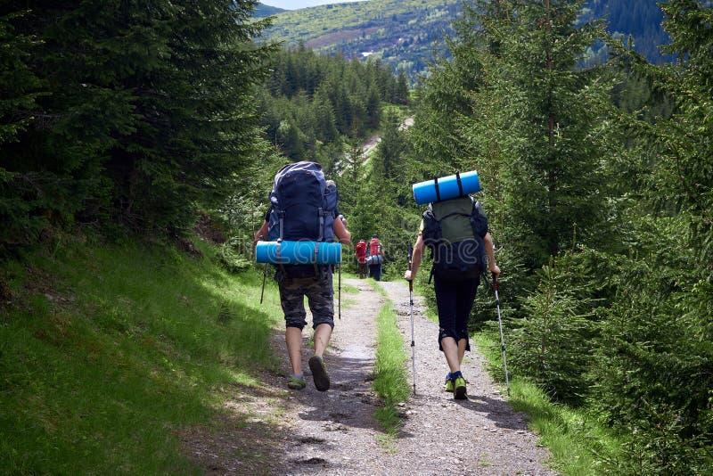 Avventuri, viaggi, turismo, aumento e concetto della gente - gruppo di amici che camminano con gli zainhi dalla parte posteriore immagine stock