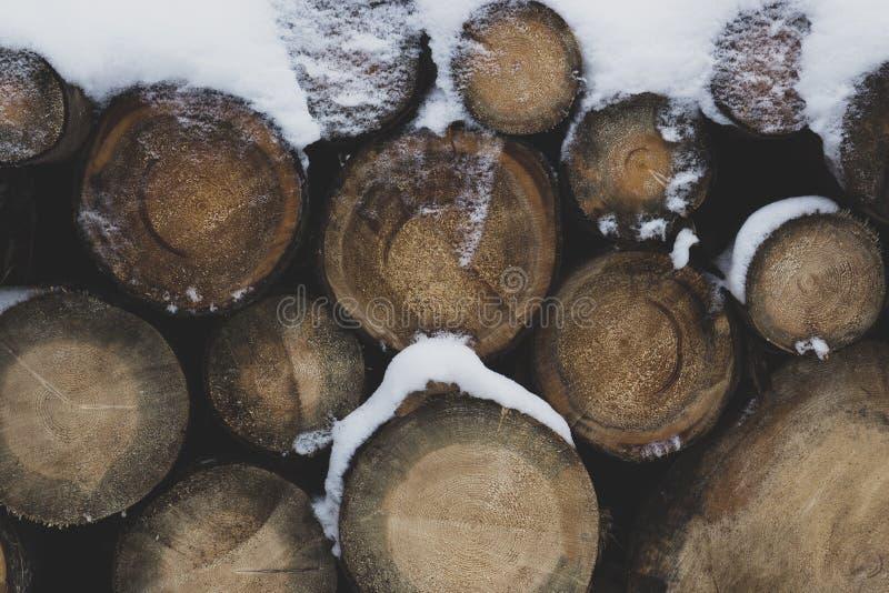 Avverkade journaler som täckas med snö fotografering för bildbyråer