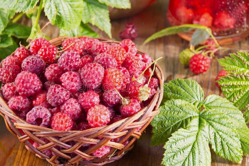 Avverkning av färska skogshallon i en korgskorg Berry sommarbakgrund royaltyfri foto