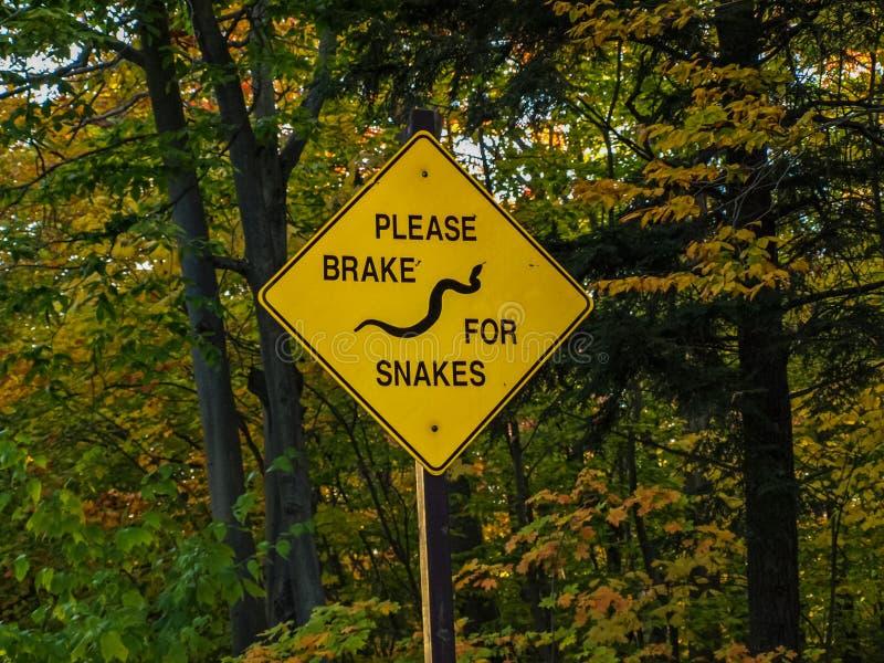 Avvertimento del segno circa i serpenti sul modo fotografia stock libera da diritti