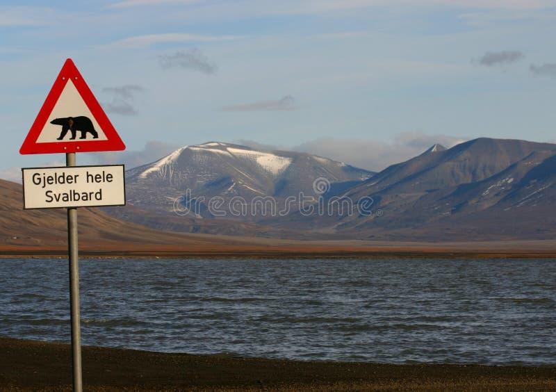 Avvertimento dell'orso polare immagine stock