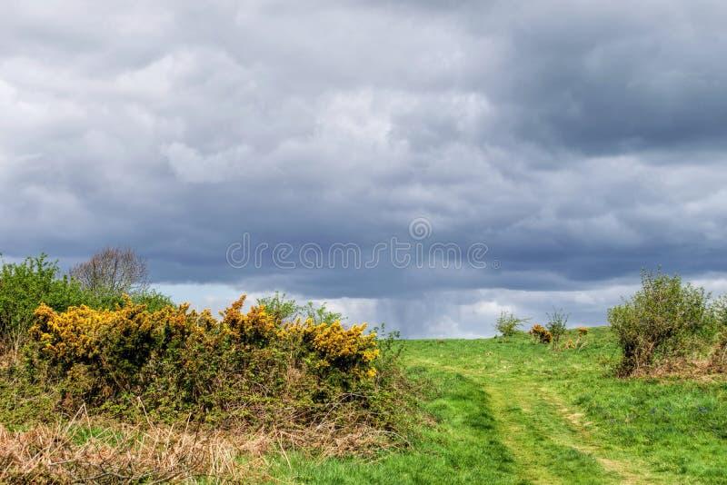 Avvicinamento della tempesta - Eype giù immagine stock libera da diritti