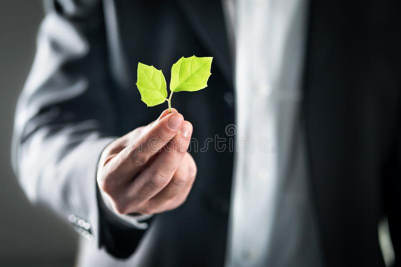 Avvocato di Eco o uomo ambientale amichevole di affari Sviluppo sostenibile, mutamento climatico, ecologia e concetto di orma del fotografia stock libera da diritti