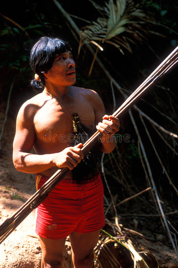 Awa indiano natale Guaja del Brasile fotografia stock
