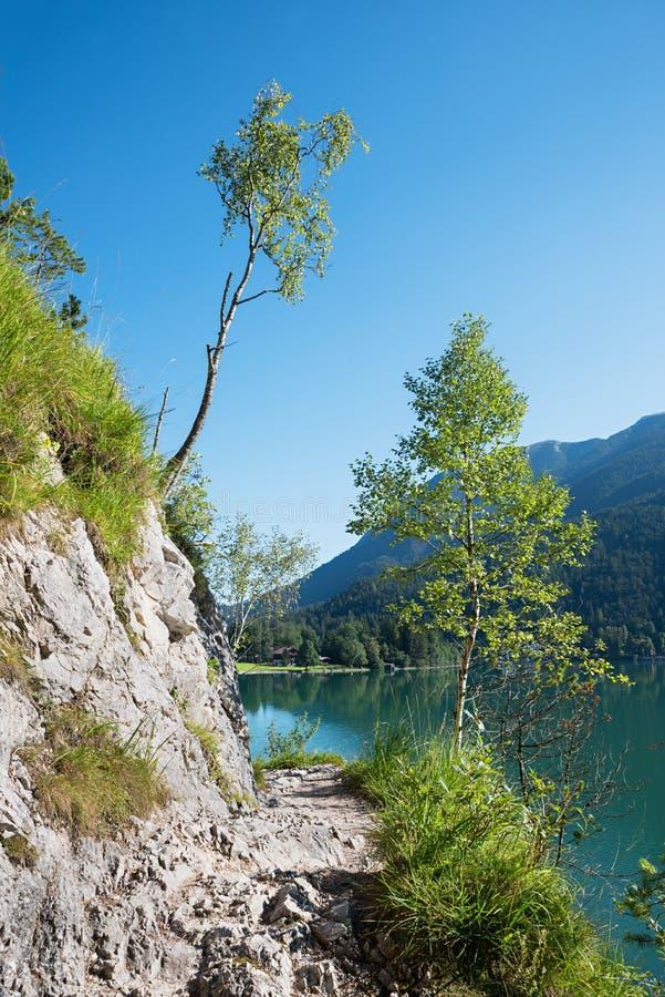 Awanturniczy wycieczkuje ślad wzdłuż jeziornego achensee Tirol obrazy stock
