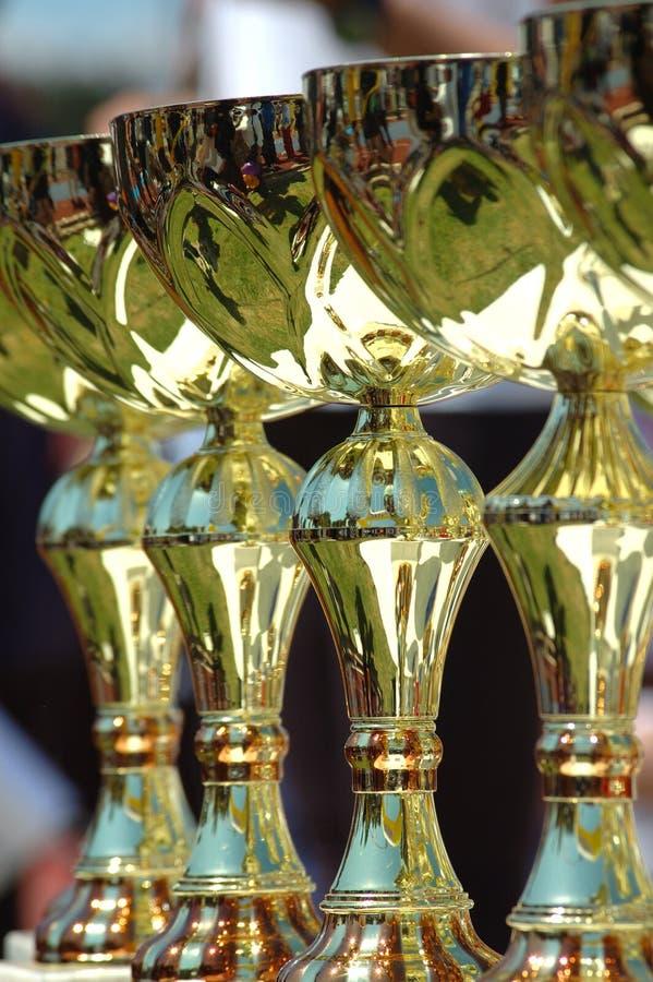 Free Awards Stock Image - 704361