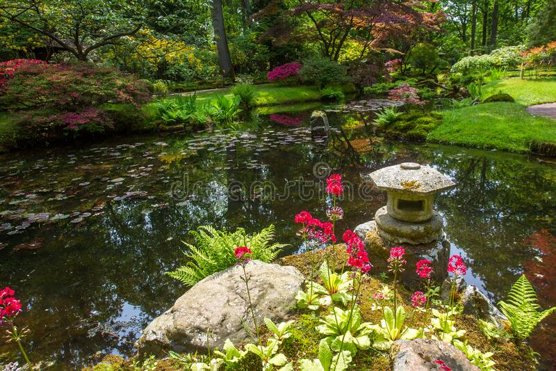 Awe scène in de japanse tuin in mei in Den Haag stock foto