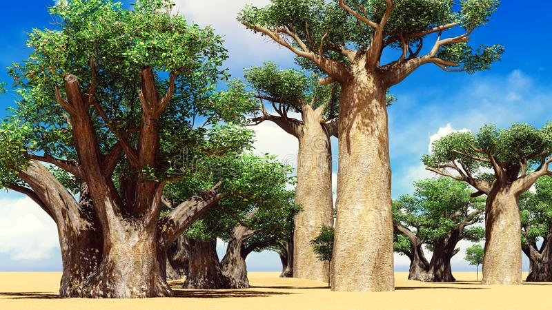 Awesome baobabs in African savannah 3d rendering vector illustration