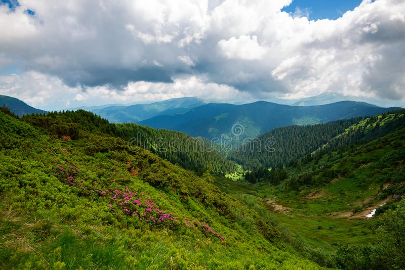 Heavy gray clouds float above the green wooded hills and valley. Awesome mountain landscape after storm - heavy gray clouds float above the green wooded hills royalty free stock image