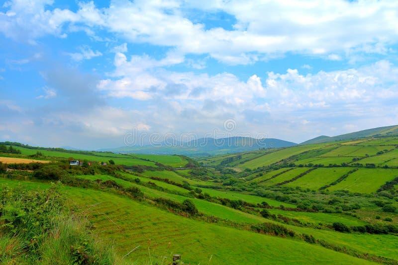 Awestruck em Emerald Isle bonito fotografia de stock royalty free