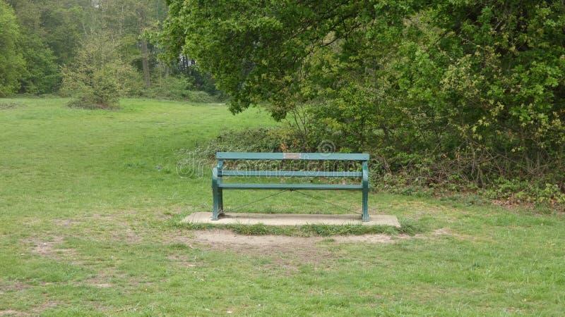 ?awka w Parkowym wspominaniu zdjęcia stock