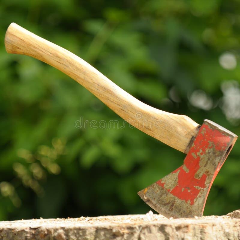 Ax (Drewniany siekacz) w Drzewnym fiszorku zdjęcie stock