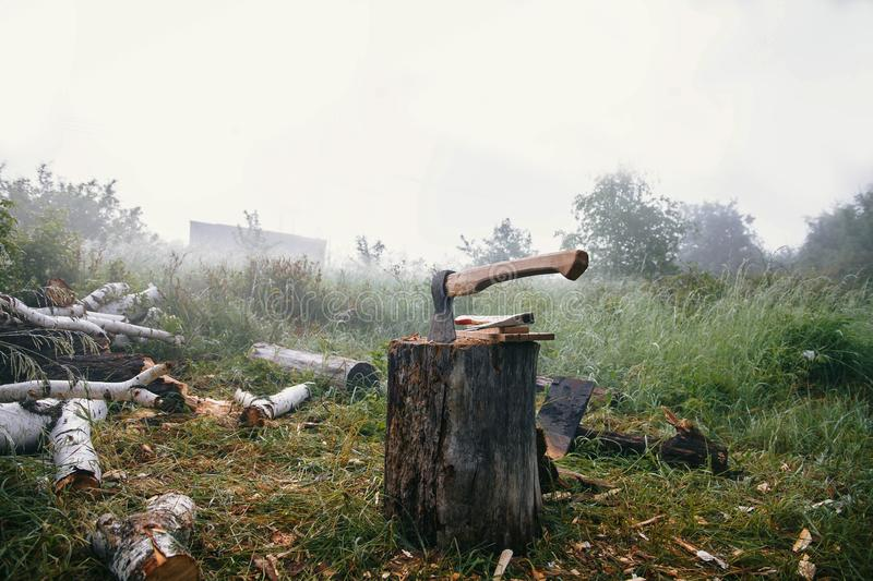 The ax is stabbed with a blade into the stump. Ax with wooden handle stock photography