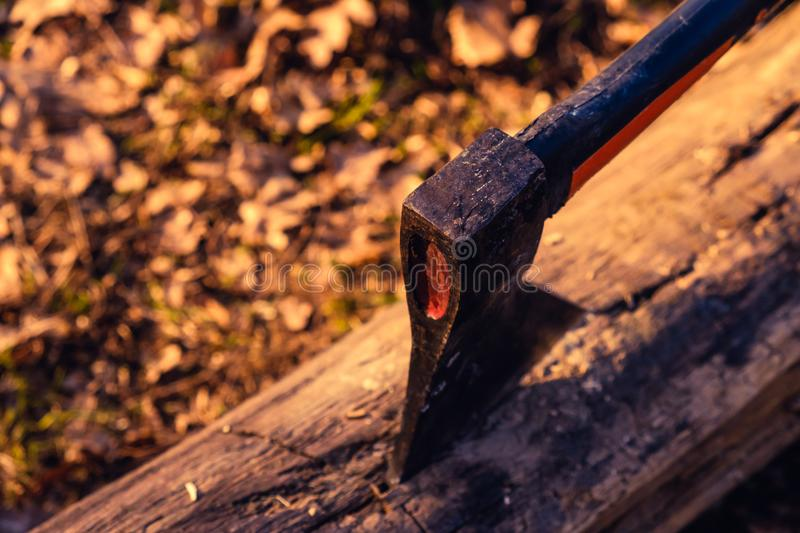 Ax is stuck in dry wood log of firewood on a picnic for a barbeque fire. Ax is stuck in a dry wood log of firewood on a picnic for a barbeque fire stock photos