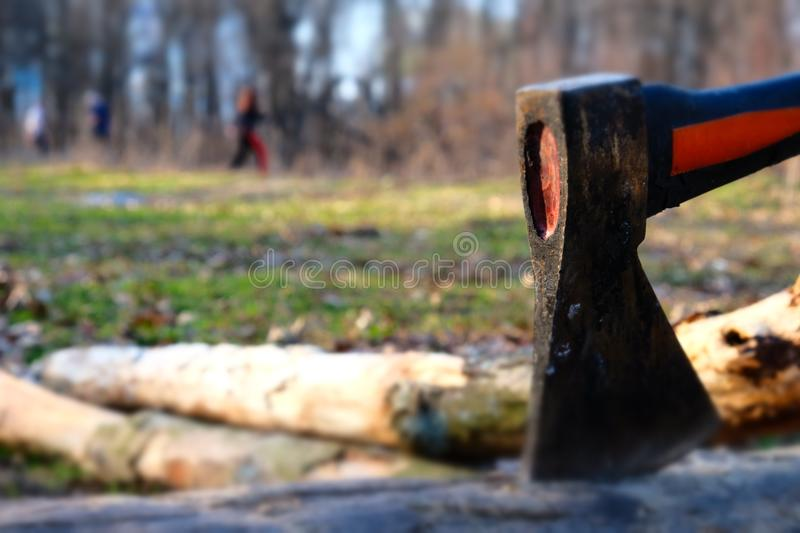 Ax is stuck in dry wood log of firewood on a picnic for a barbeque fire. Ax is stuck in a dry wood log of firewood on a picnic for a barbeque fire royalty free stock photos