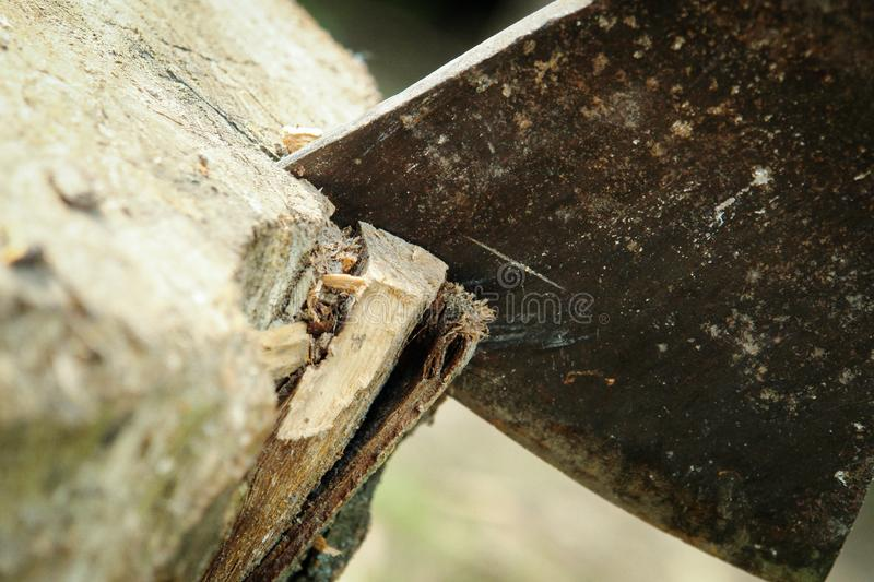 The ax in the stump. Ax And Stump. Iron Ax Shunts Old Stump for Woodcutting royalty free stock photo