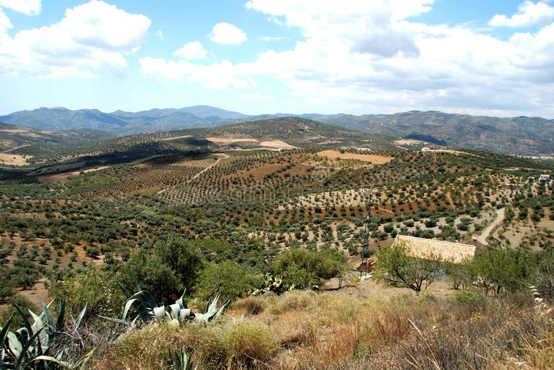 Download Axarquia Countryside, Andalusia, Spain. Stock Photo - Image: 24024974