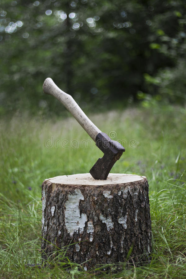 Download Axe and block stock image. Image of bark, camping, equipment - 25842549